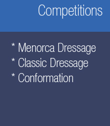 Competitions: menorcan taming, classic taming and morphologic