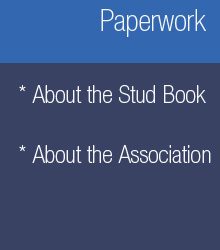 Paperwork about studbook, the association, the husbandry and the horses